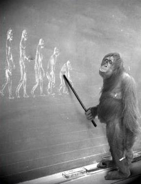 DarwinismOrIntelligentDesign